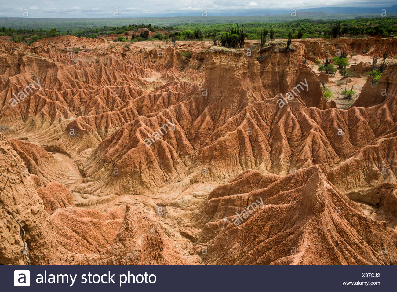 South America, Latin America, Colombia, nature, Tatacao, desert, rock formations, Huila, erosion, national park, - Stock Image