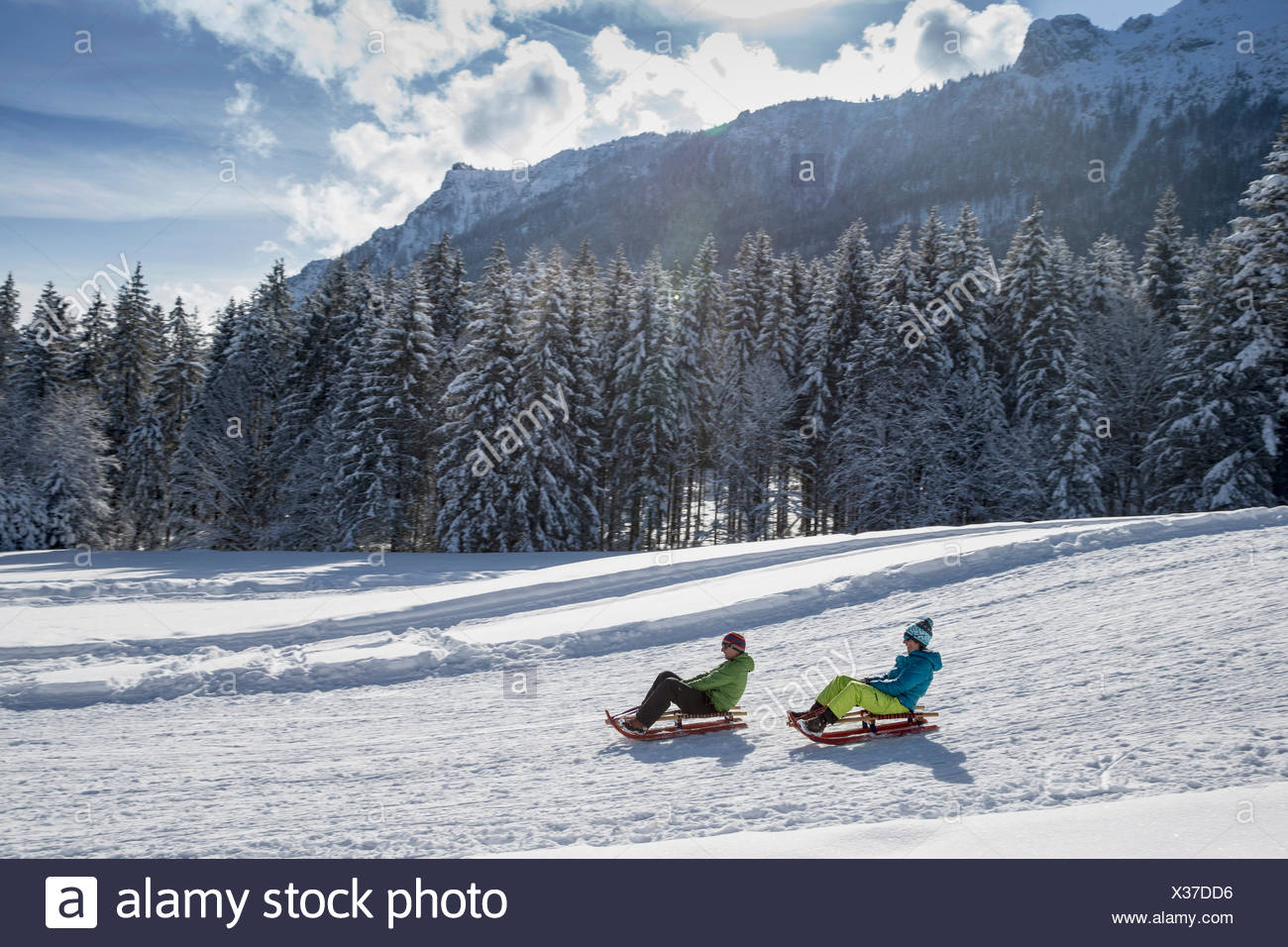 Germany, Bavaria, Inzell, couple on sledges in snow-covered landscape Stock Photo