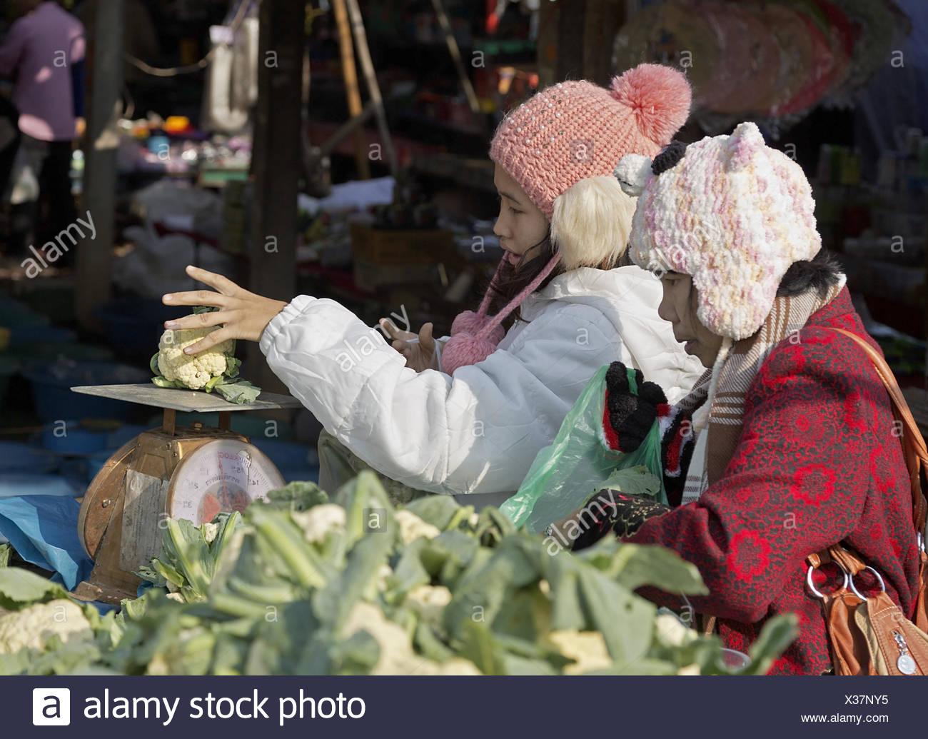 Cauliflower - Stock Image