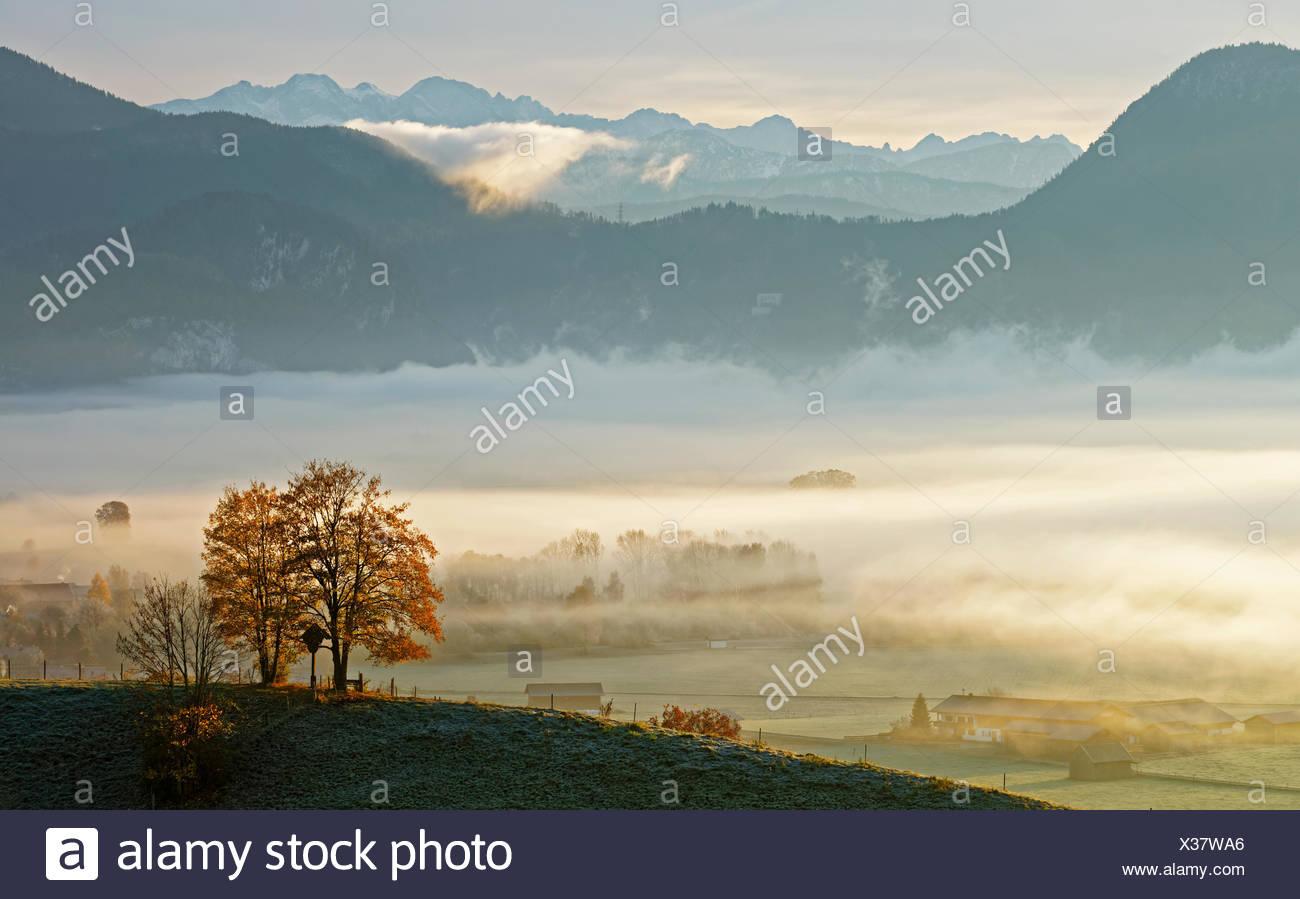 Morgenstimmung Ÿber Loisachmoor, Deutschland, Bayern, Oberbayern, Gro§weil Stock Photo