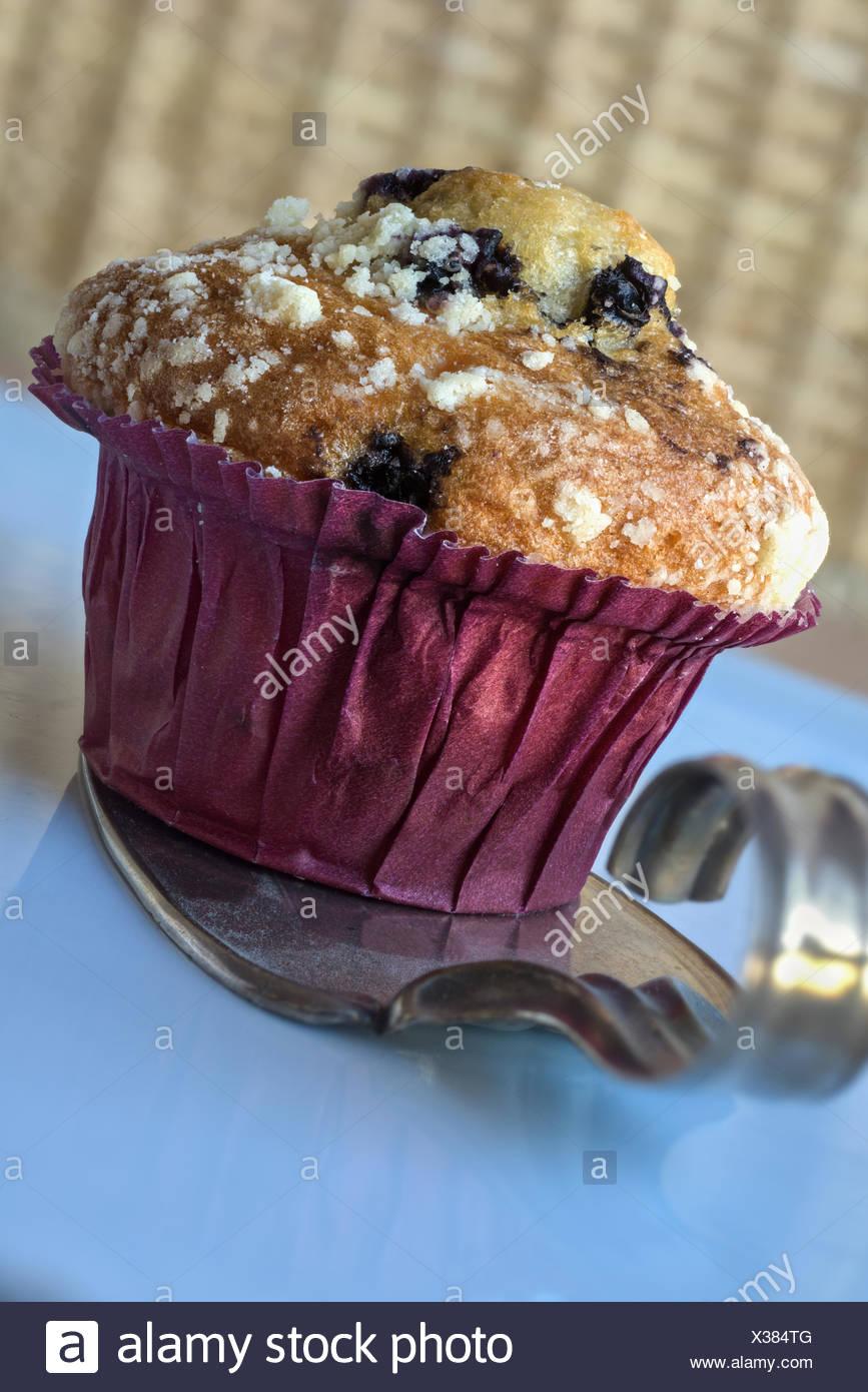 Cupcake and cake lifter - Stock Image