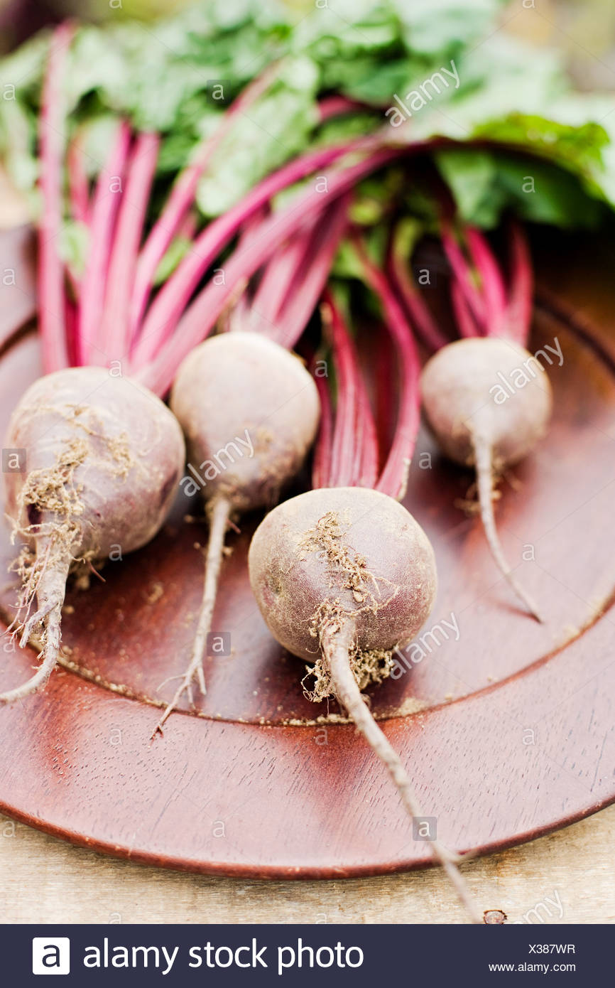 Fresh beetroot with stems Stock Photo