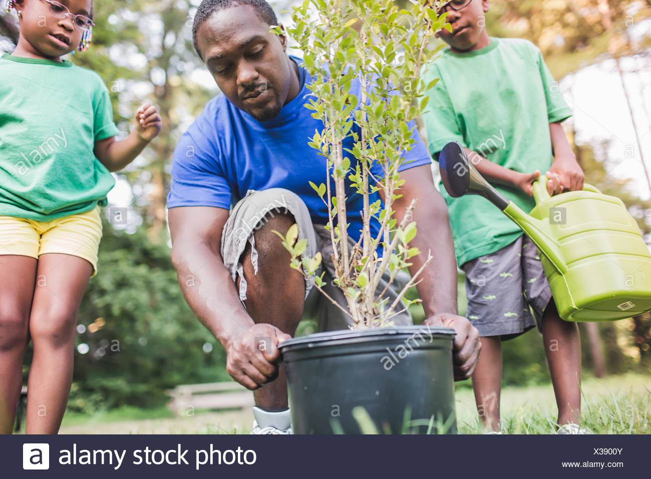 Father tending plants with son and daughter at parkland eco camp - Stock Image