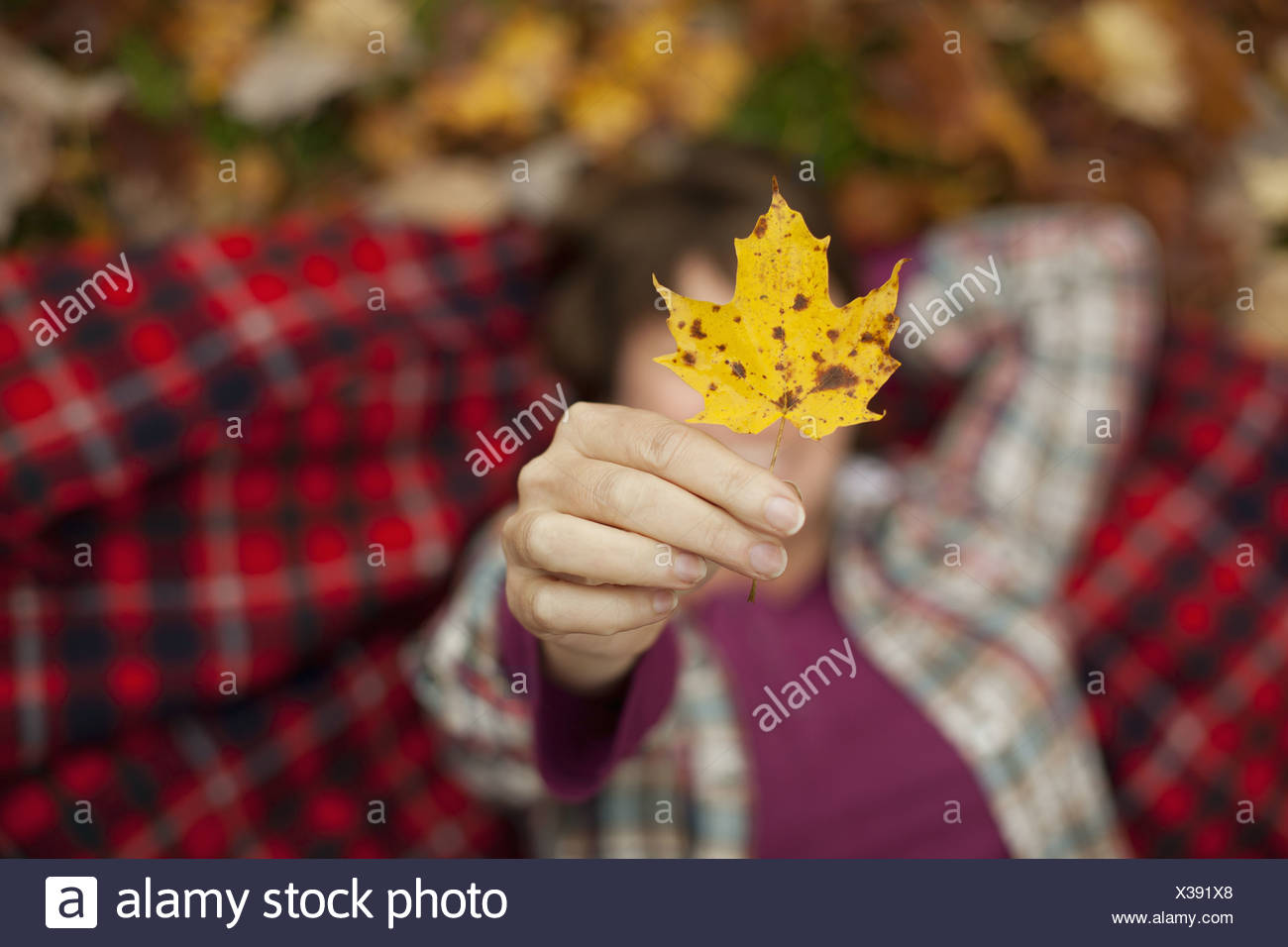 A woman lying on a red tartan picnic blanket, looking upwards, holding a maple leaf. Stock Photo