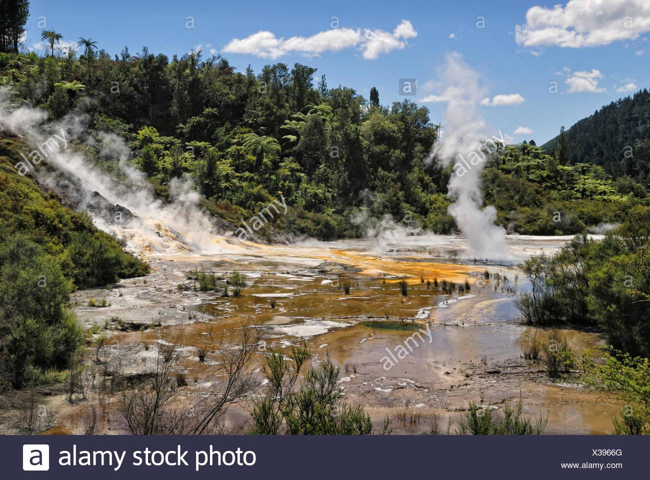 Artists Palette, Orakei Korako Cave and Thermal Park, Hidden Valley, Taopo-Rotorua, North Island, New Zealand - Stock Image