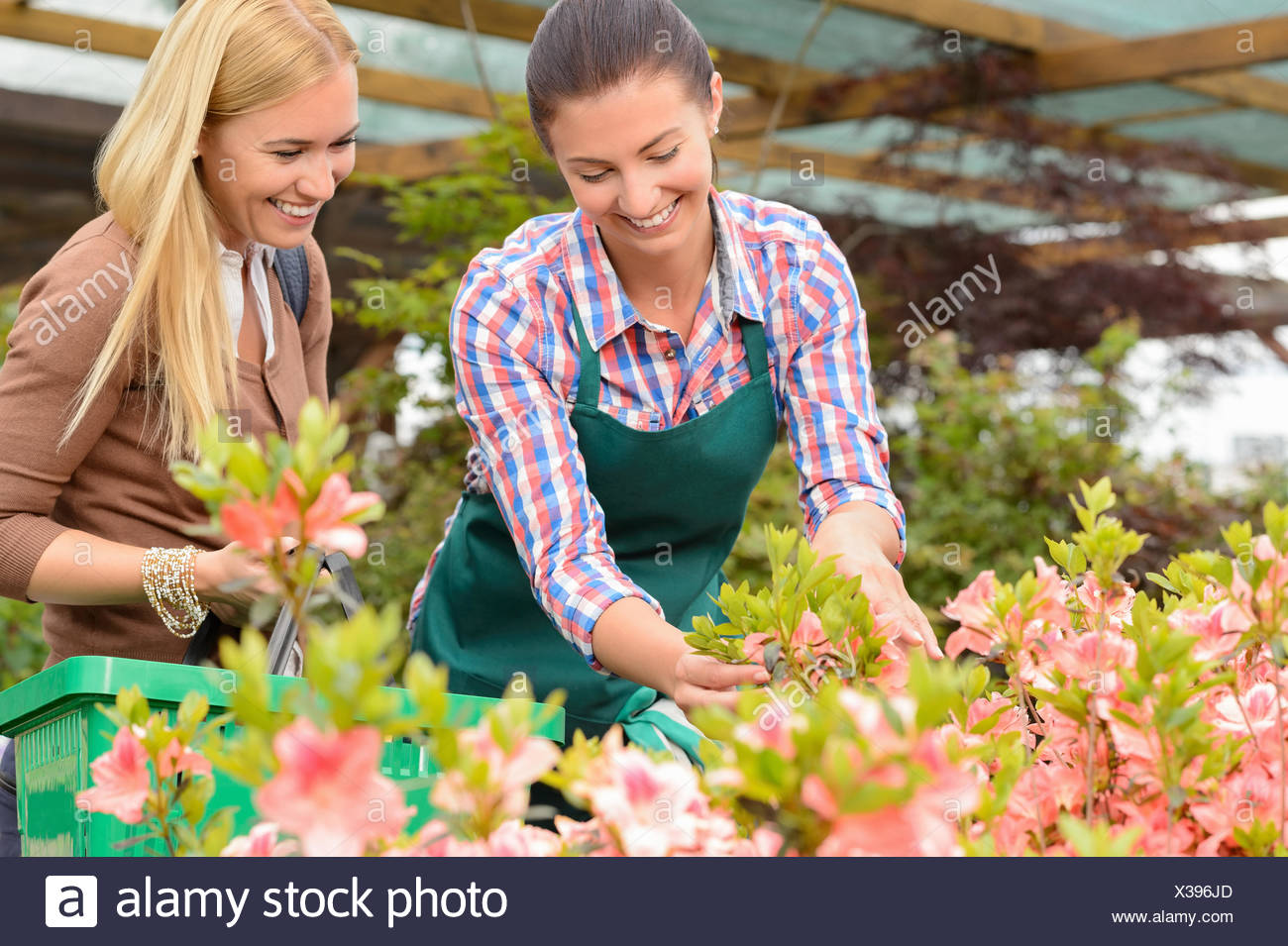 Garden center woman show flowers to customer - Stock Image