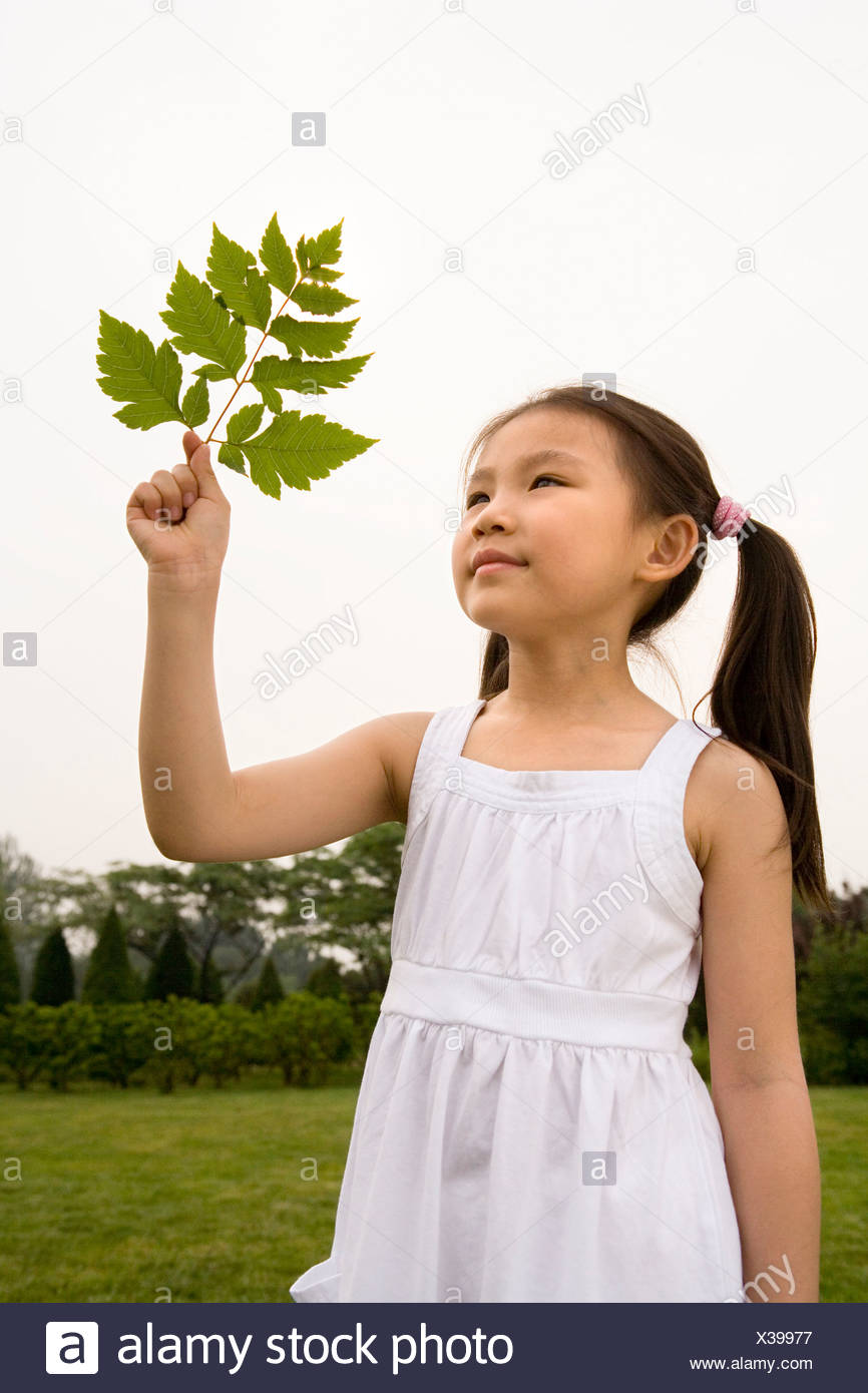 Young Girl Holding A Leaf In The Park - Stock Image