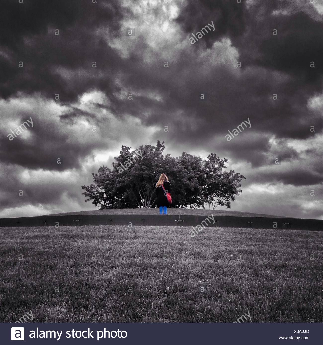 Rear View Of Woman Standing On Field Against Cloudy Sky - Stock Image