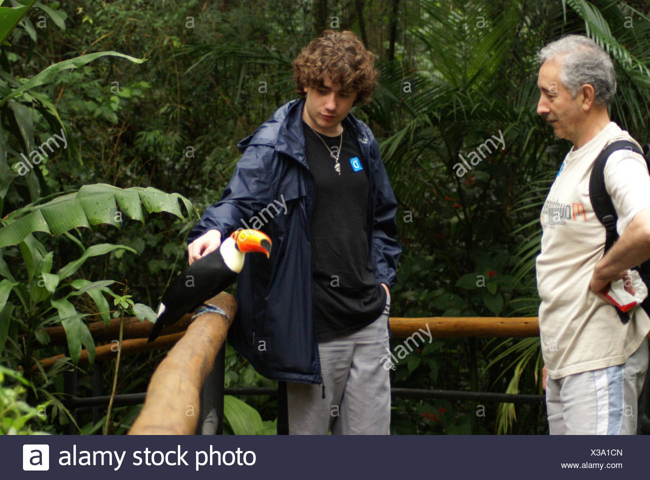 People, bird, Toucan-stub, OiseauxFoz, Foz Iguaçu, Brazil - Stock Image