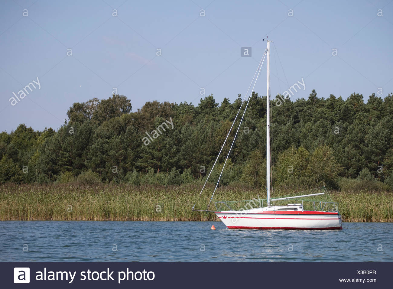 small private yacht - Stock Image
