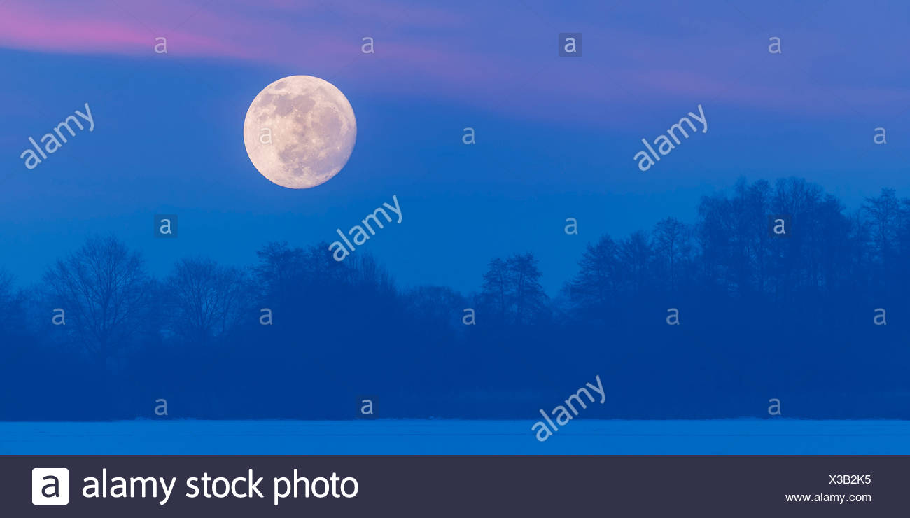 full moon over lake dümmer, dümmerlohhausen, district diepholz, niedersachsen, germany - Stock Image