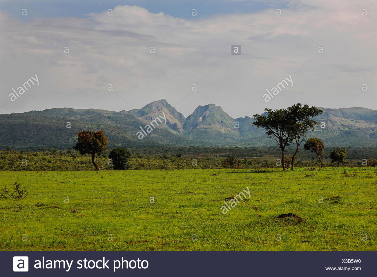 Landscape of Central Cameroon, Adamawa Region, Cameroon - Stock Image