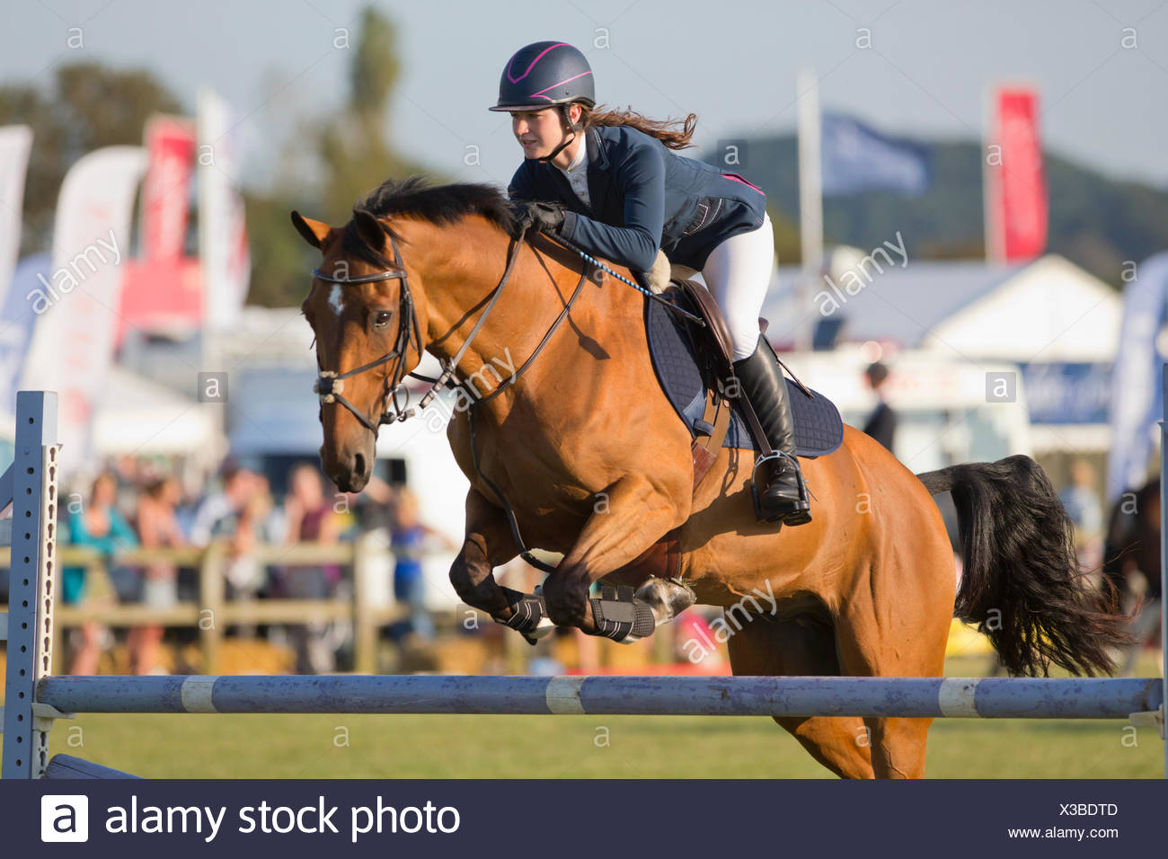 Female Showjumper clearing jump on horse - Stock Image