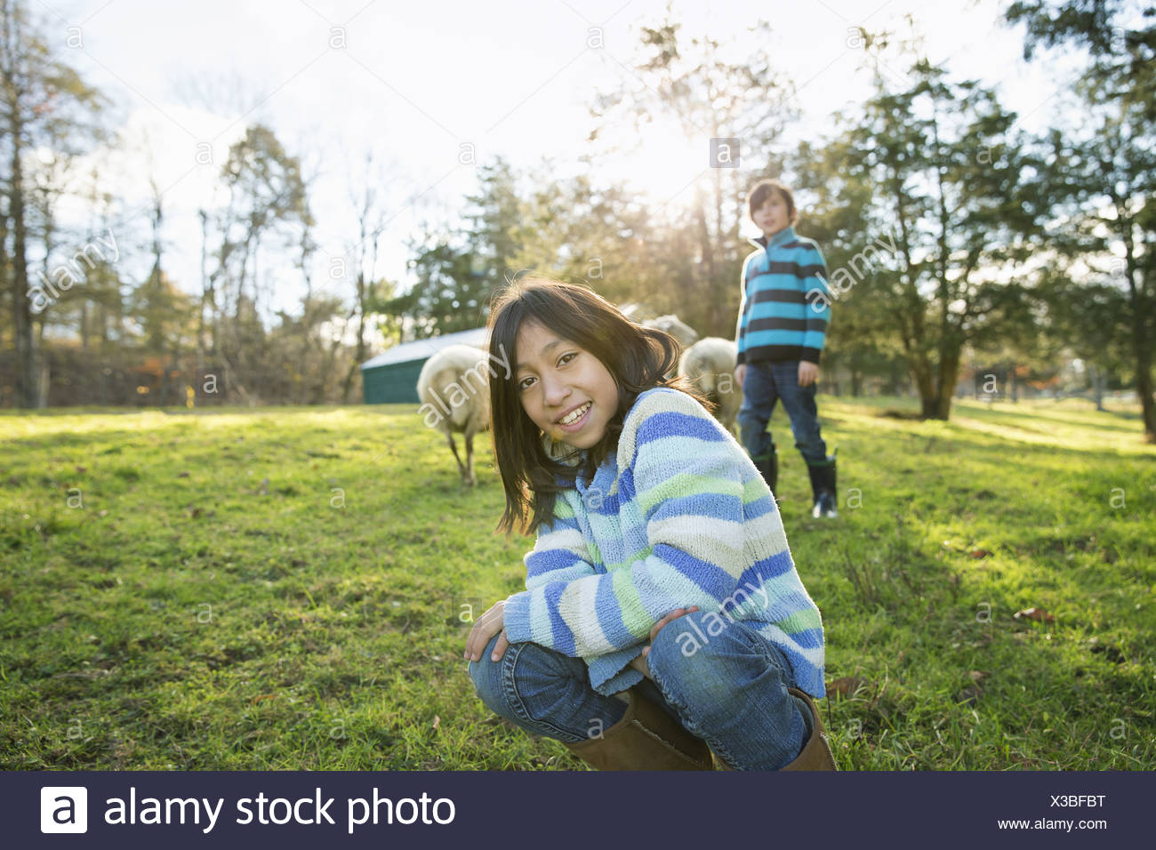 Two children at an animal sanctuary, in an animal enclosure with a group of sheep. - Stock Image