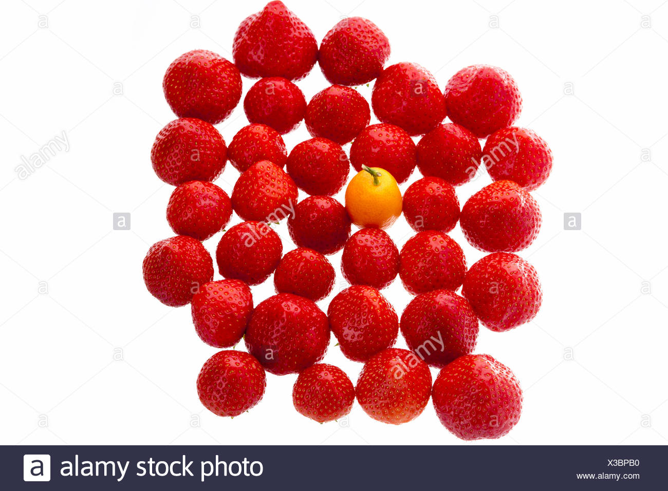 Single Kumquat In A Crowd Of Strawberry Fruits - Stock Image