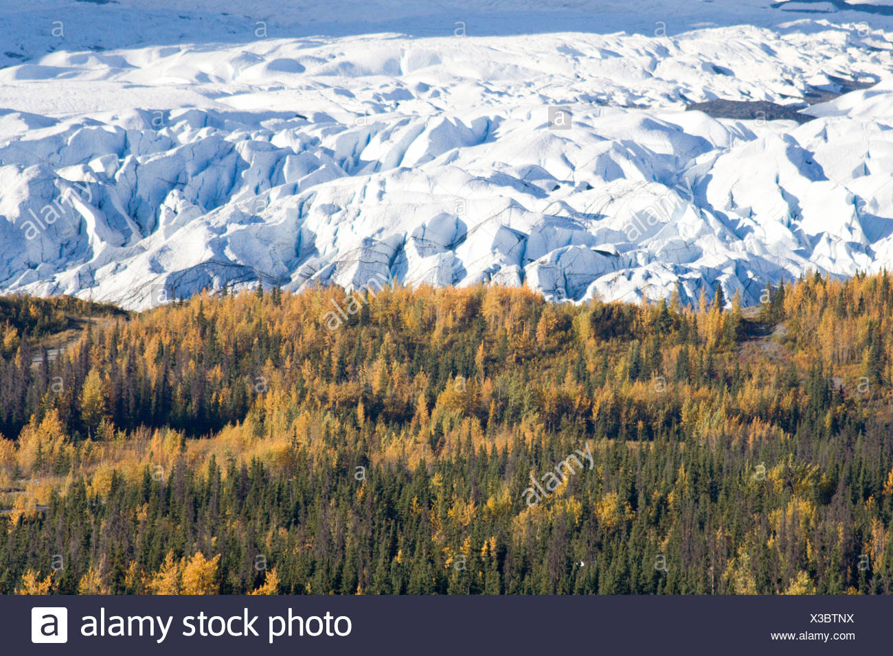 Matanuska Glacier, Chugach Mountains, Alaska, USA - Stock Image