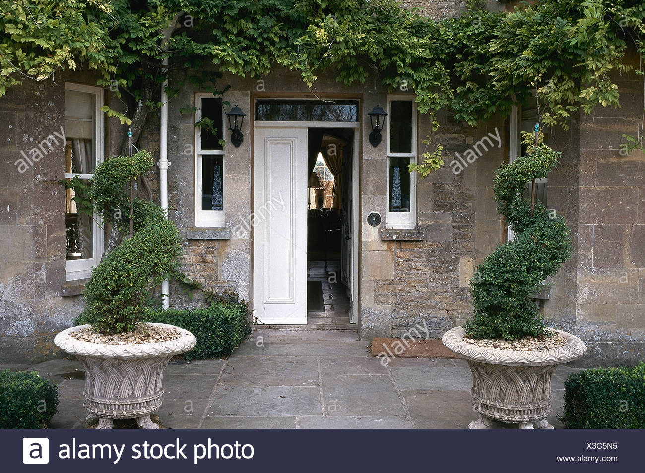 Spiral Topiary Box In Stone Urns In Front Of House With Open Front Door Stock Photo Alamy