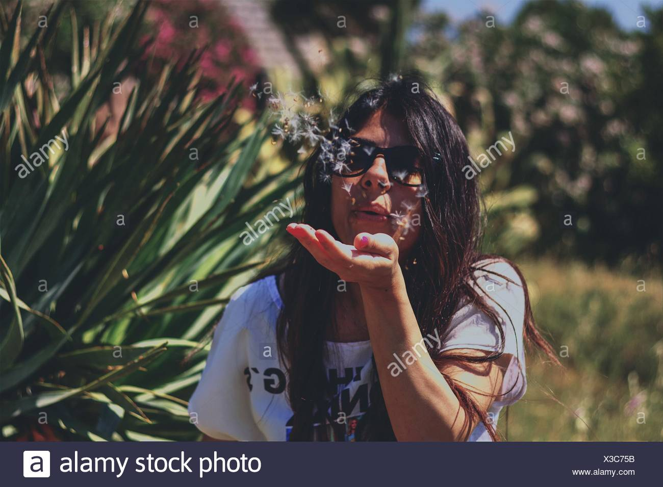 Front View Of Young Woman Blowing Dandelion Seeds Over Palm - Stock Image