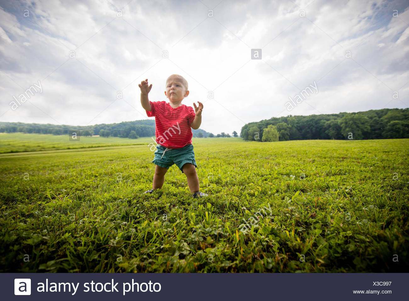 Baby boy toddling in grassy  rural field - Stock Image