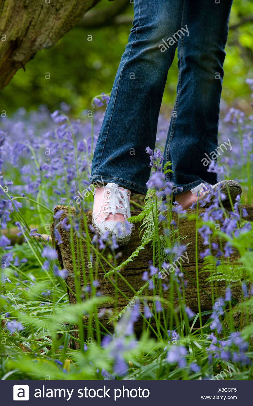 Girl balancing on log among bluebell flowers - Stock Image