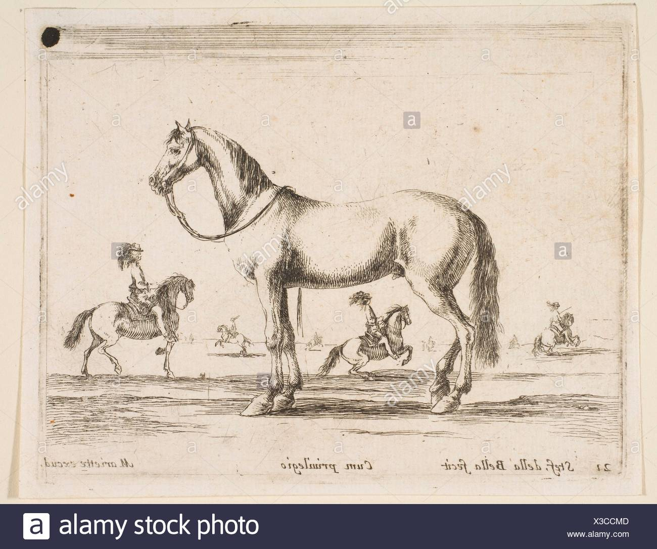 Plate 21: horse, from 'Various animals' (Diversi animali). Series/Portfolio: 'Various animals' (Diversi animali); Artist: Stefano della Bella - Stock Image