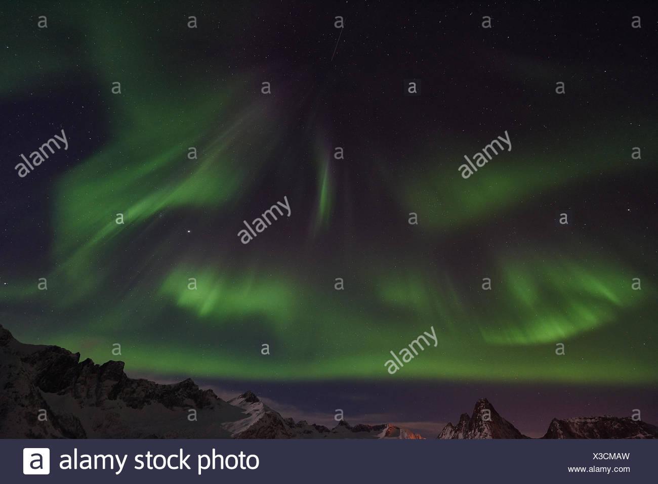 Northern lights (Aurora borealis), Senja, Norway - Stock Image