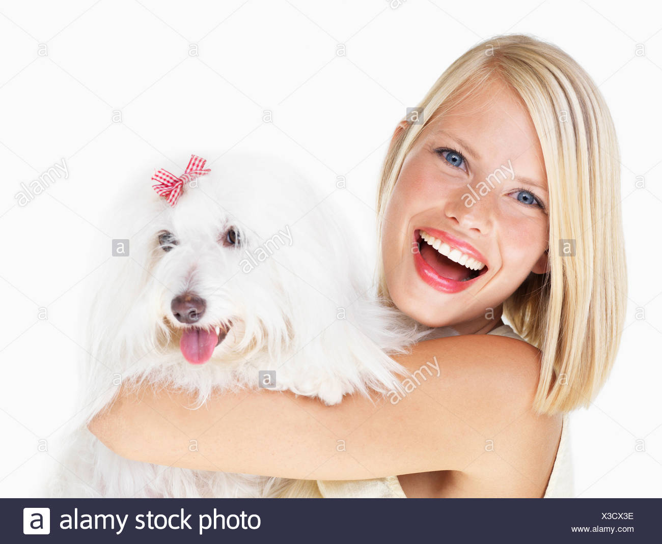 Studio Shot, Portrait of young woman holding dog - Stock Image