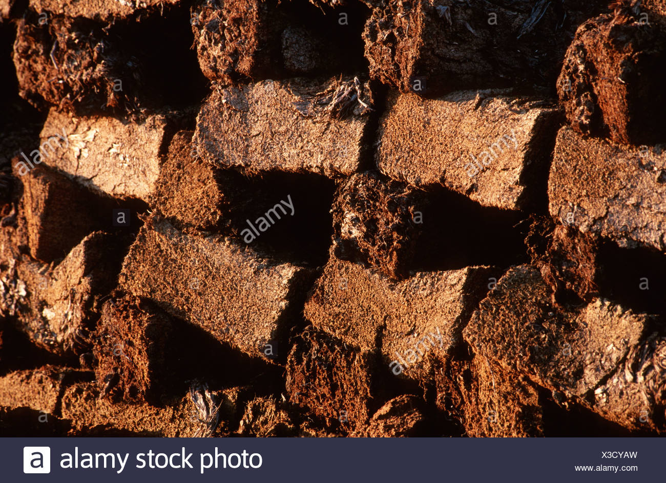 peat bricks, piled for drying, evening light, Germany, Lower Saxony - Stock Image