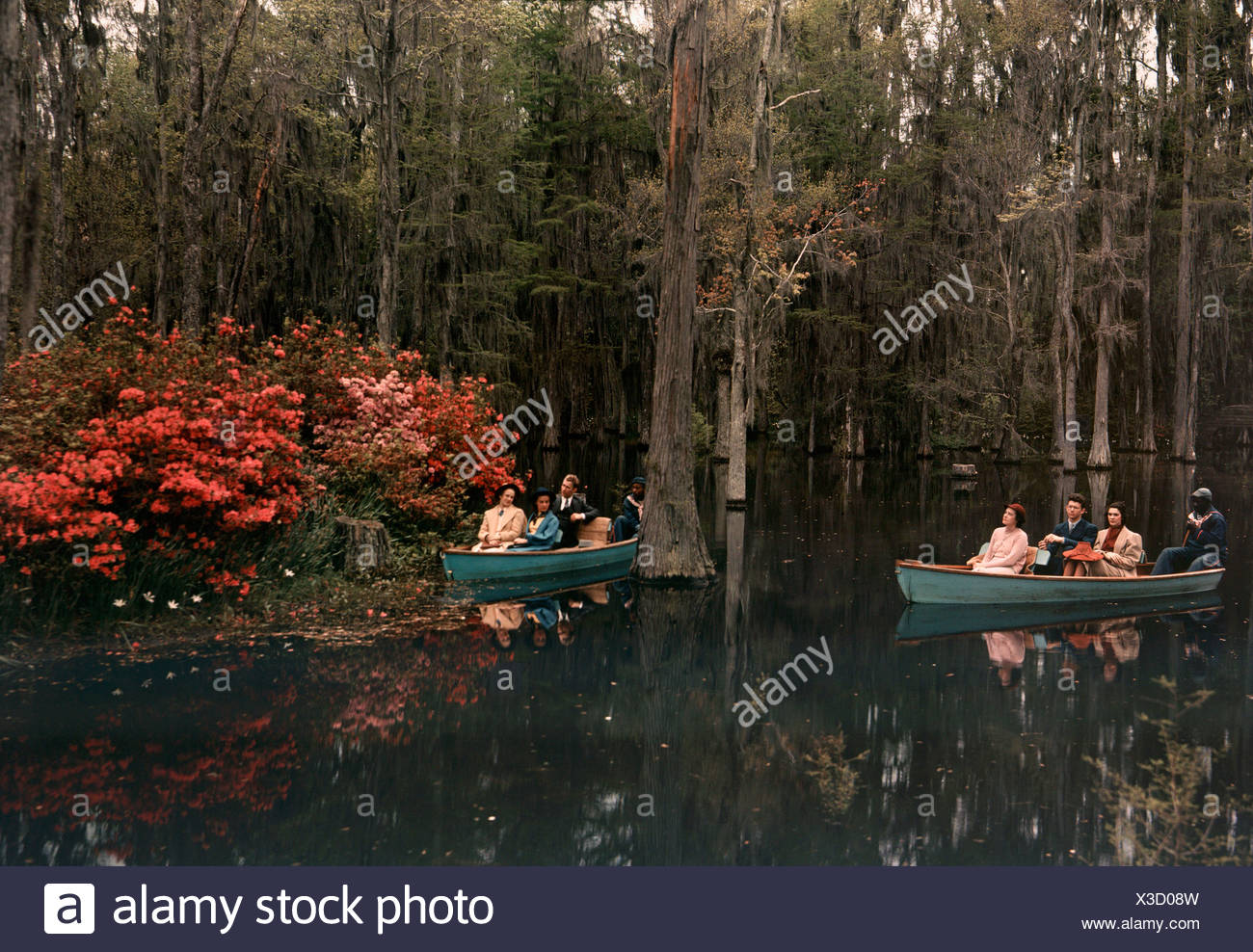 Tannic acid from old trees stains water in Cypress Gardens black. - Stock Image