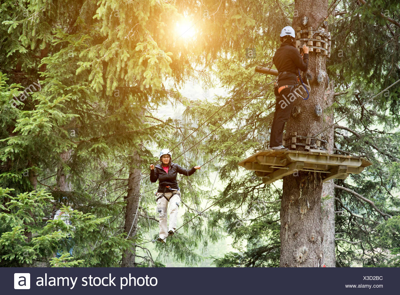 Friends in forest using high rope course - Stock Image