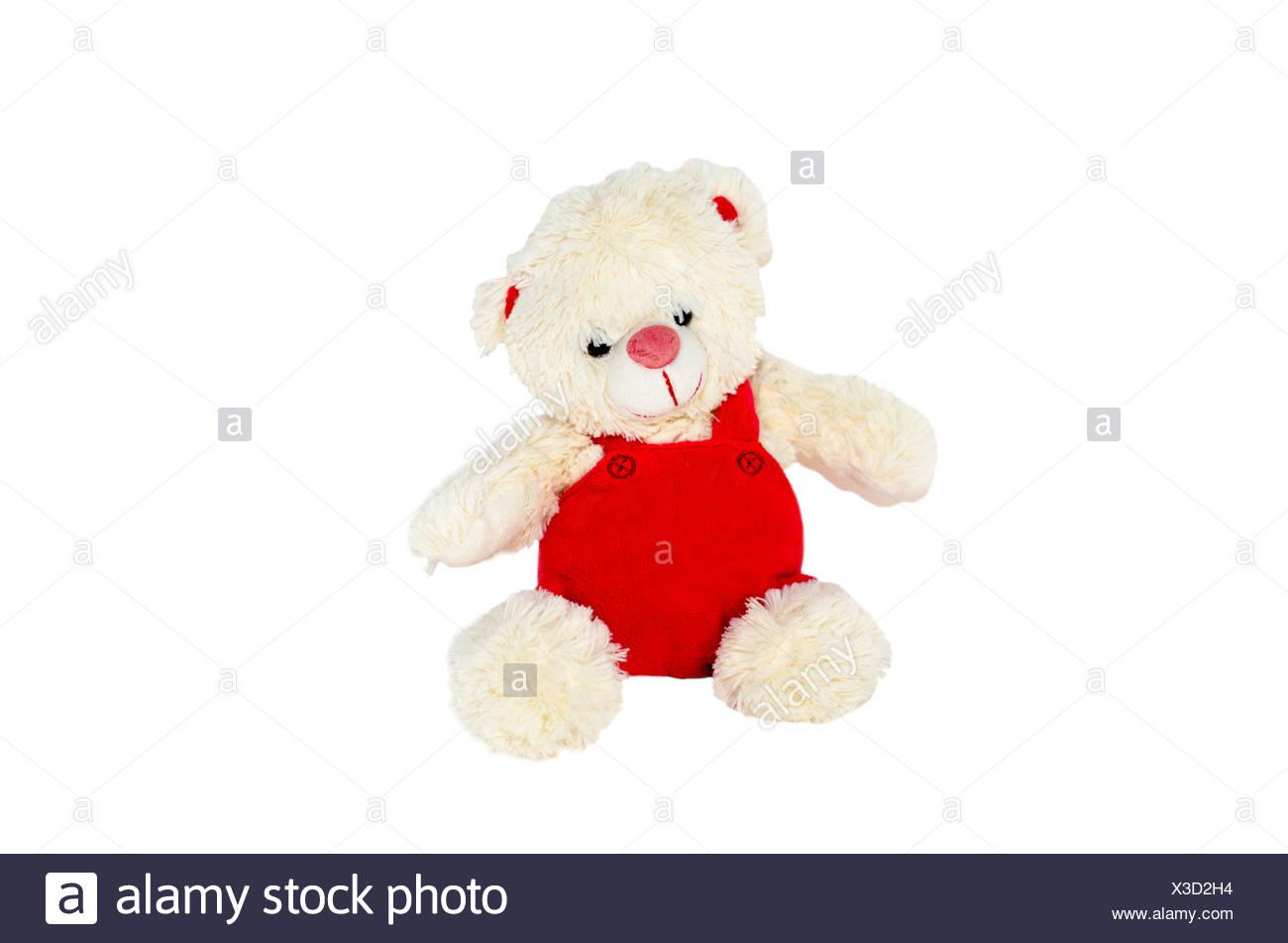 Isolate plush bear - Stock Image