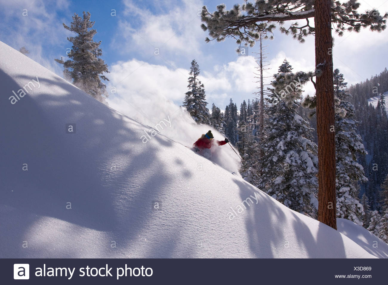 A woman skiing powder snow at Northstar at Tahoe ski area near Lake Tahoe in California Stock Photo