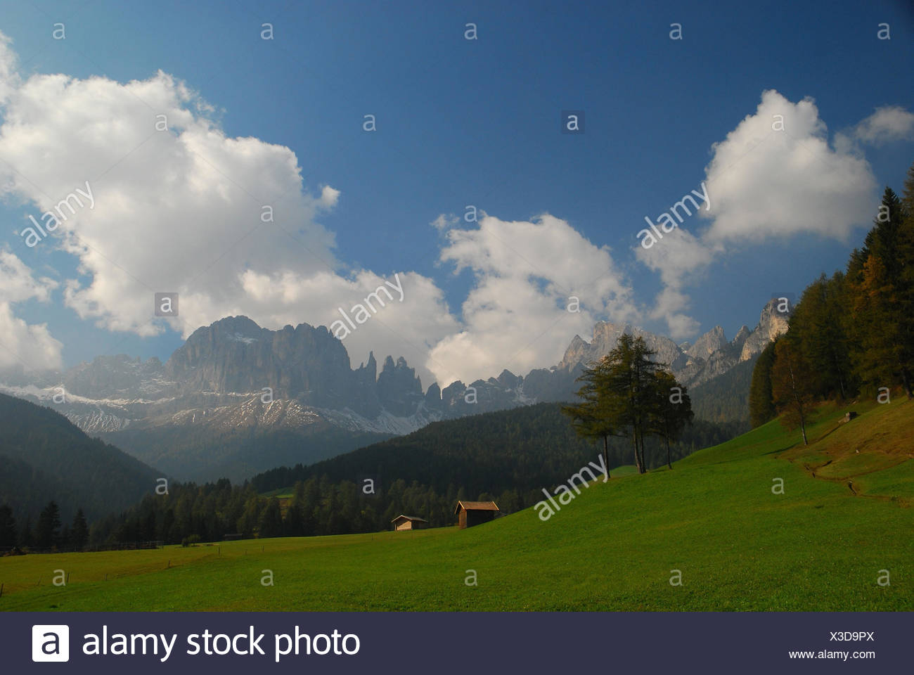 Italy,South Tirol,Tierser valley,St. Zyprian,the Dolomites,mountain pasture,rose garden,Vajolettürme,pert electrolytic capacitor gel, - Stock Image