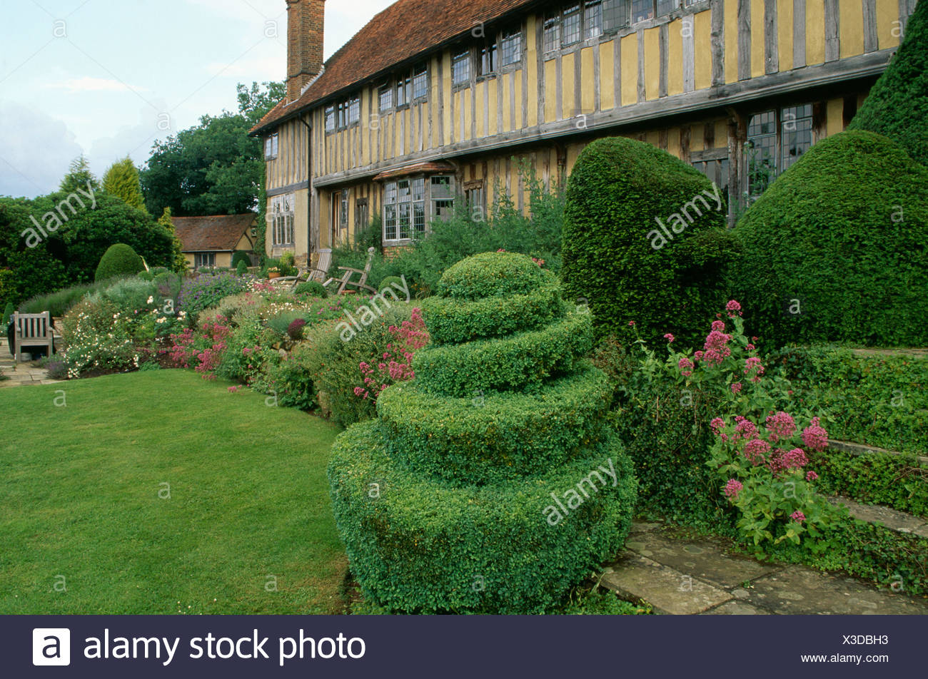 Spiral Topiary Shrubs In Border In Front Of Large Timbered Medieval Country House Stock Photo Alamy