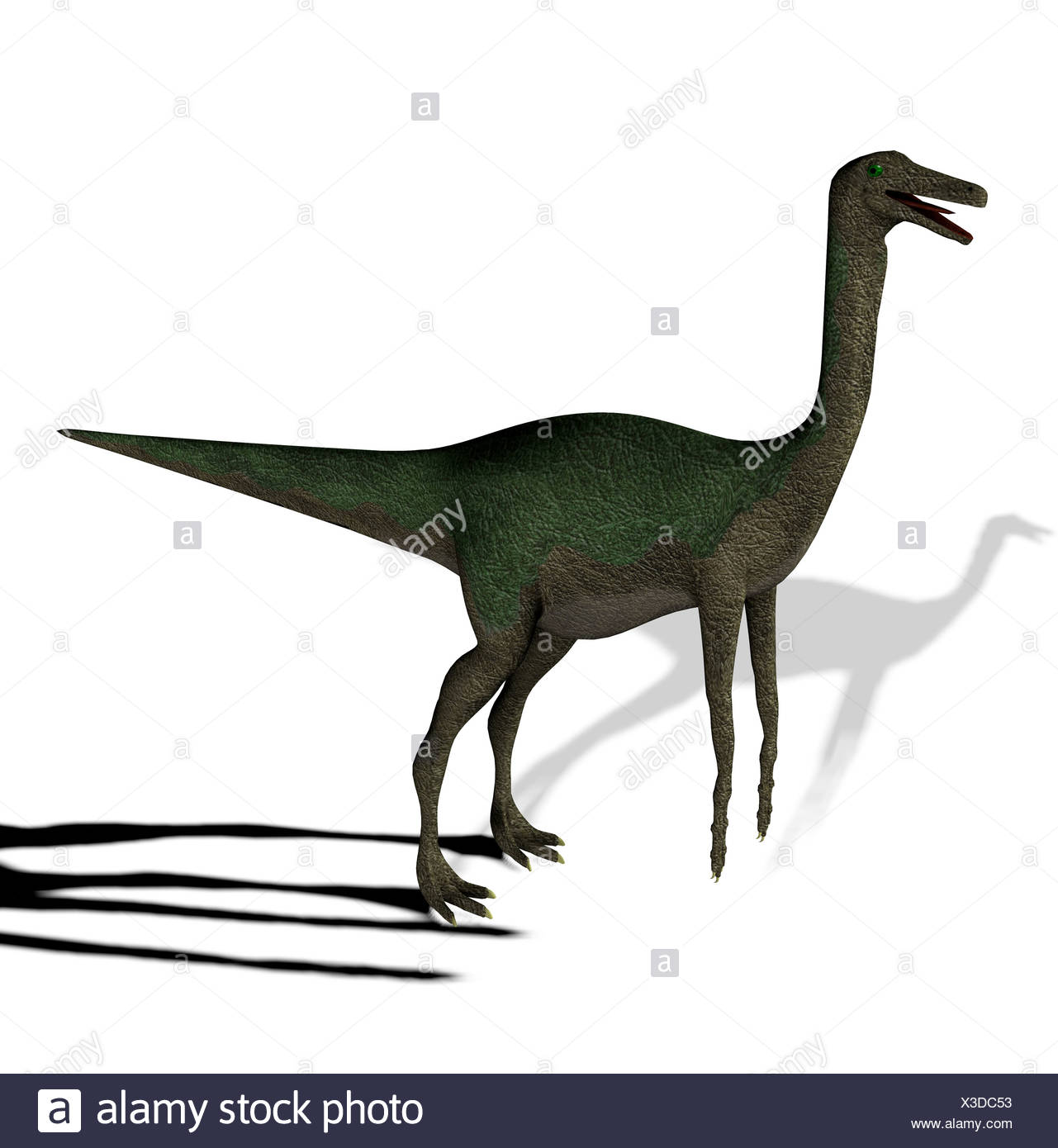 The Gallimimus seemed also chickens to imitators mentioned with a length from more than 6 meters it in the Cretaceous period Stock Photo