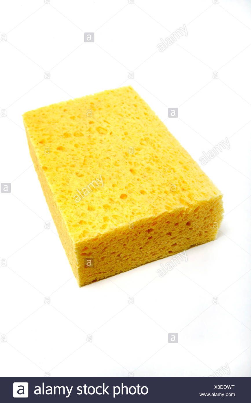 Sponge, close up - Stock Image