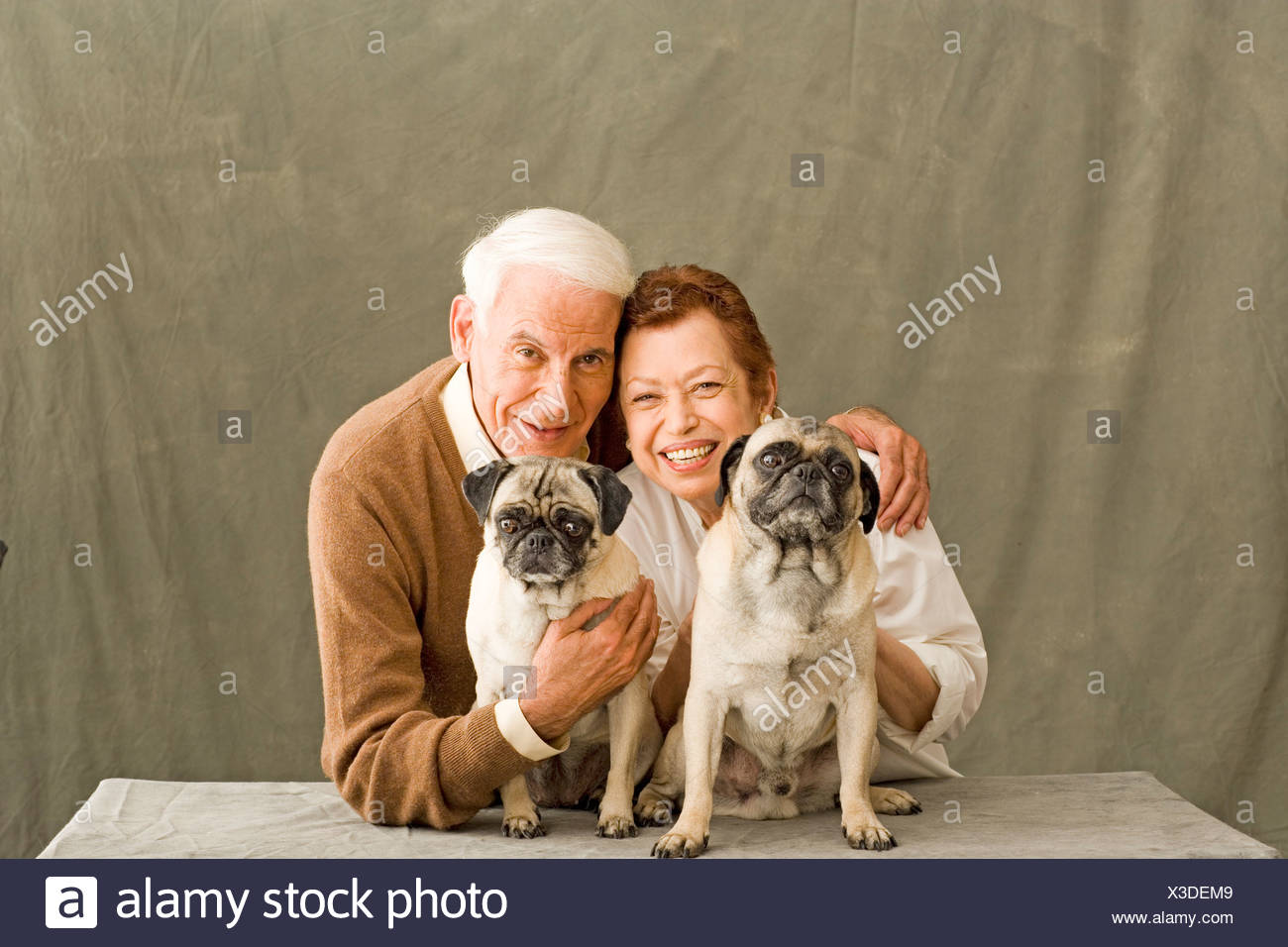 Old couple posing with two dogs - Stock Image