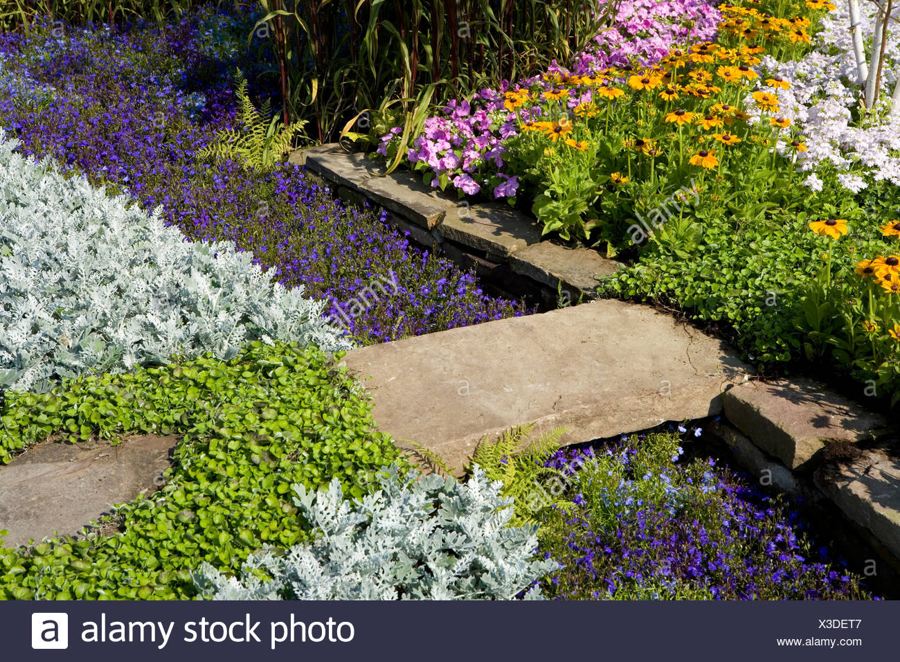 Stepping Stone Across A Flower Bed   Stock Image