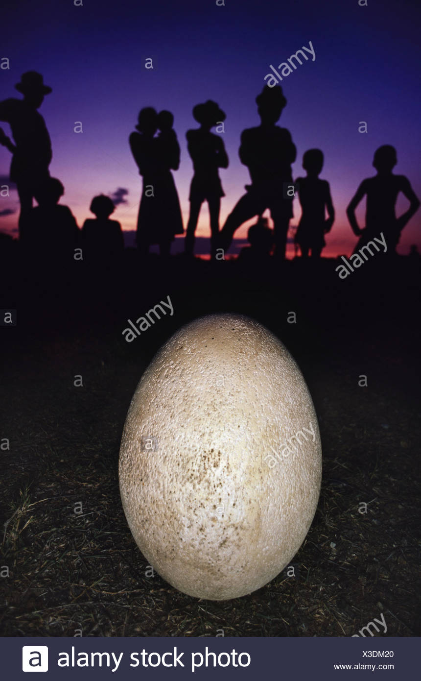 Villagers with a revered object an elephant bird egg Aepyornis maximus Southern Madagascar Southern Madagascar - Stock Image