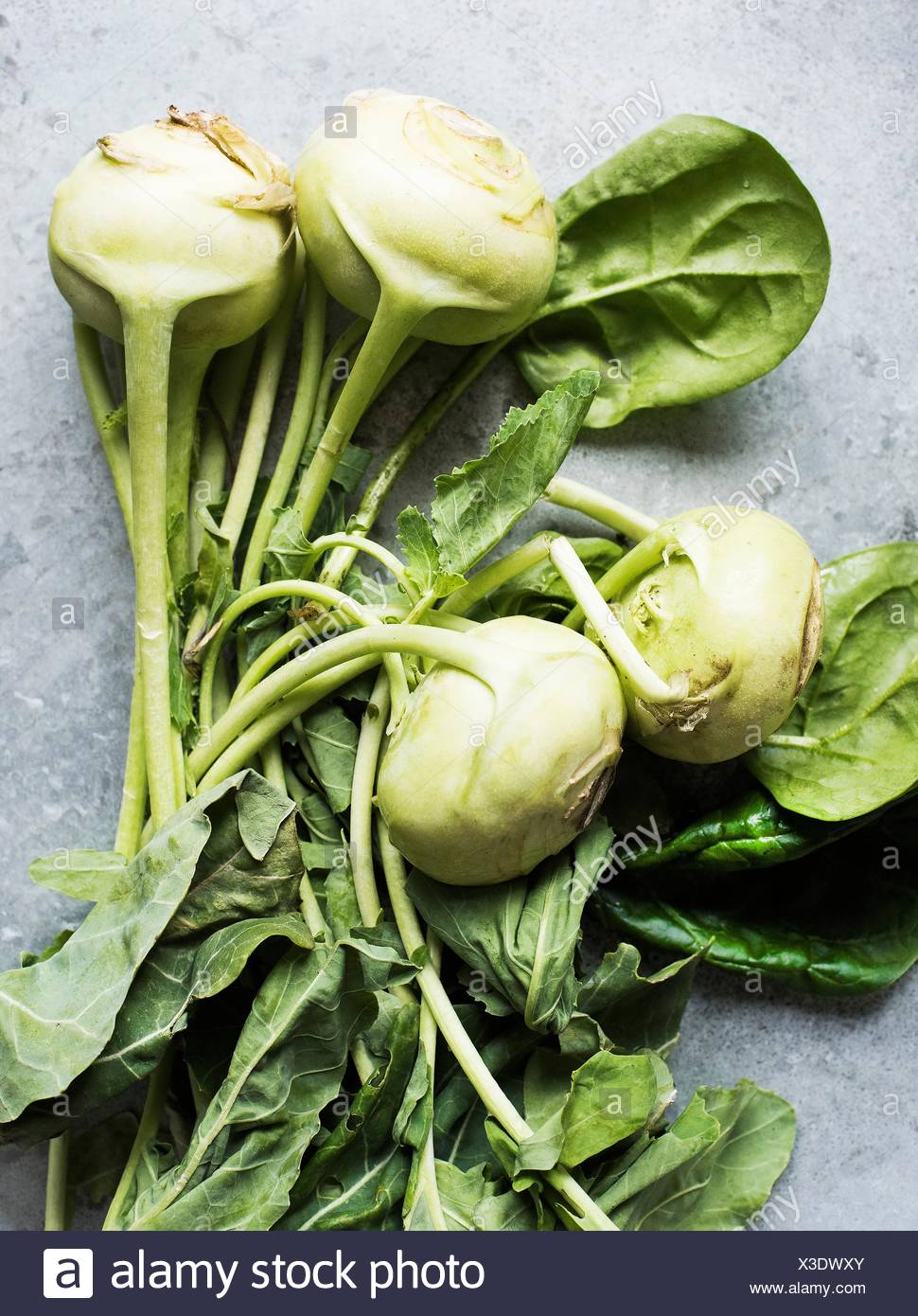 Overhead view of kohlrabi with leaves - Stock Image