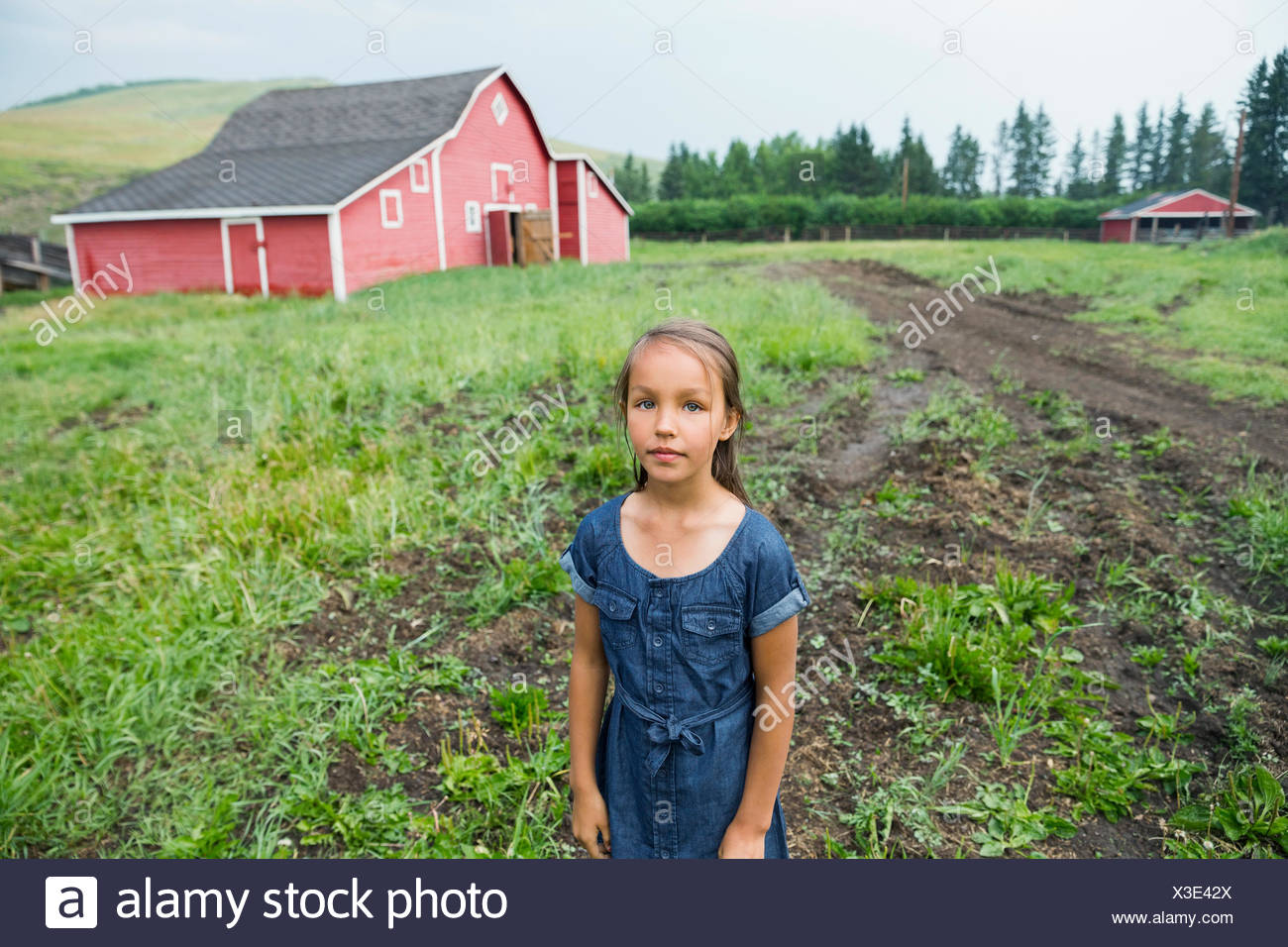 Portrait of girl in rural pasture outside barn - Stock Image