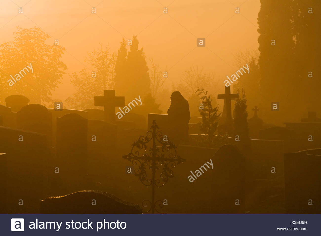 Germany, Bavaria, Hohenpeißenberg, Grave yard at dawn - Stock Image