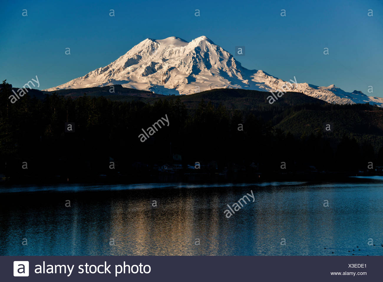 mount Shasta, clear lake, California, lake, USA - Stock Image