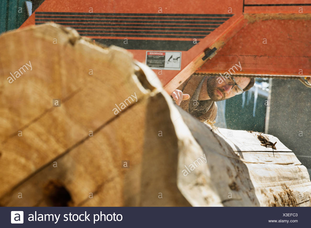 Woodworker looking at large log going through band saw Stock Photo