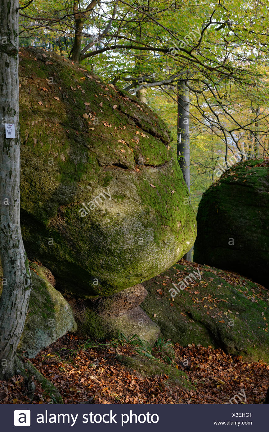 Rock park, rocks, rock garden, concentric weathering, castle grounds, Falkenstein, Upper Palatinate, Bavaria, Germany - Stock Image