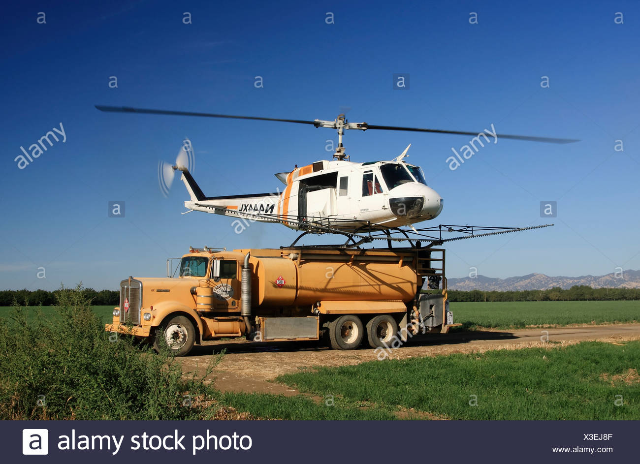 Helicopter crop duster lands on the back of a chemical truck to refill the tanks during spraying operations of a walnut orchard. - Stock Image