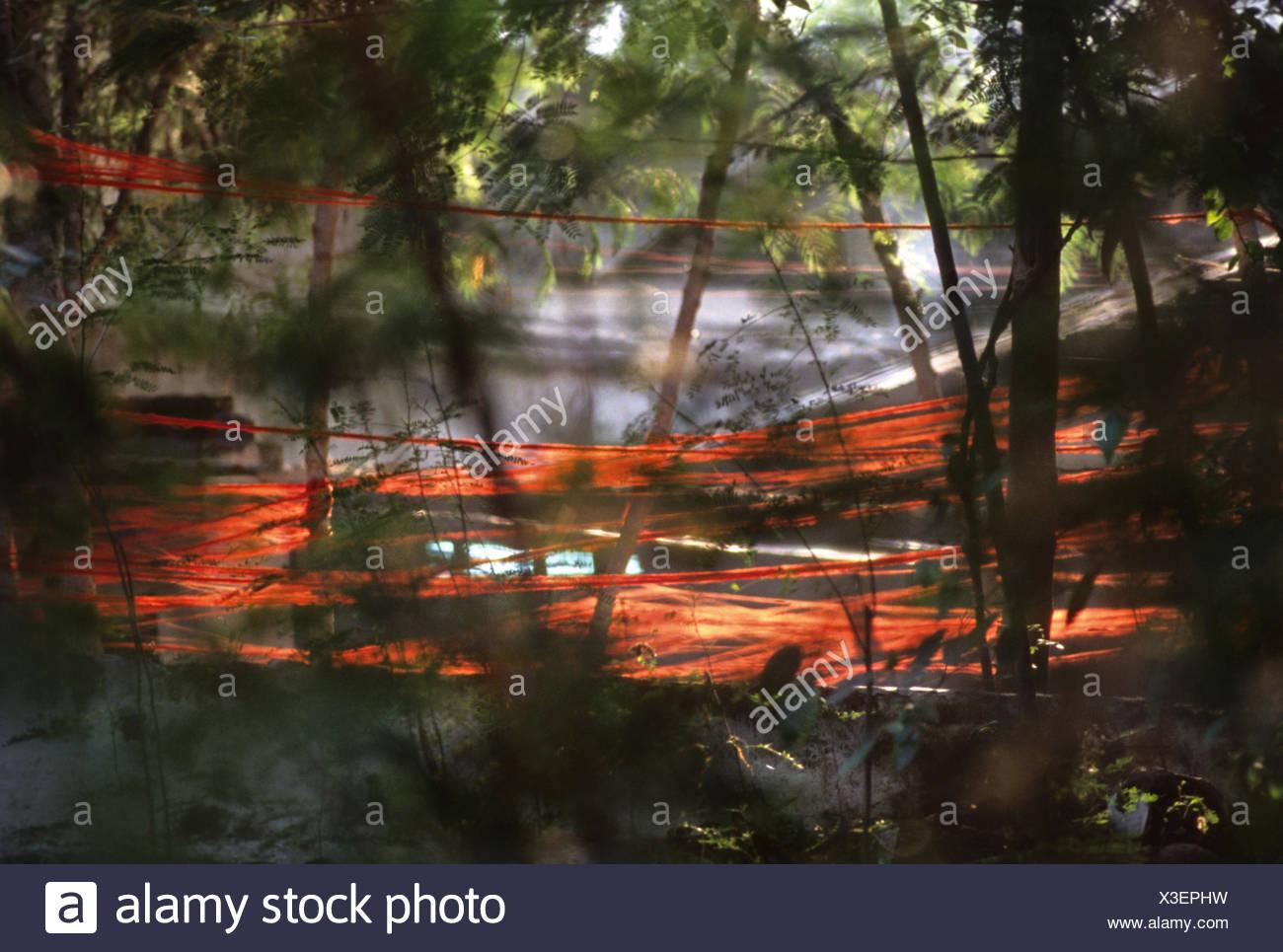Drying dyed warp - Stock Image