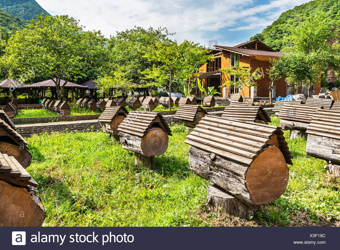 Hives in an apiary - Stock Image