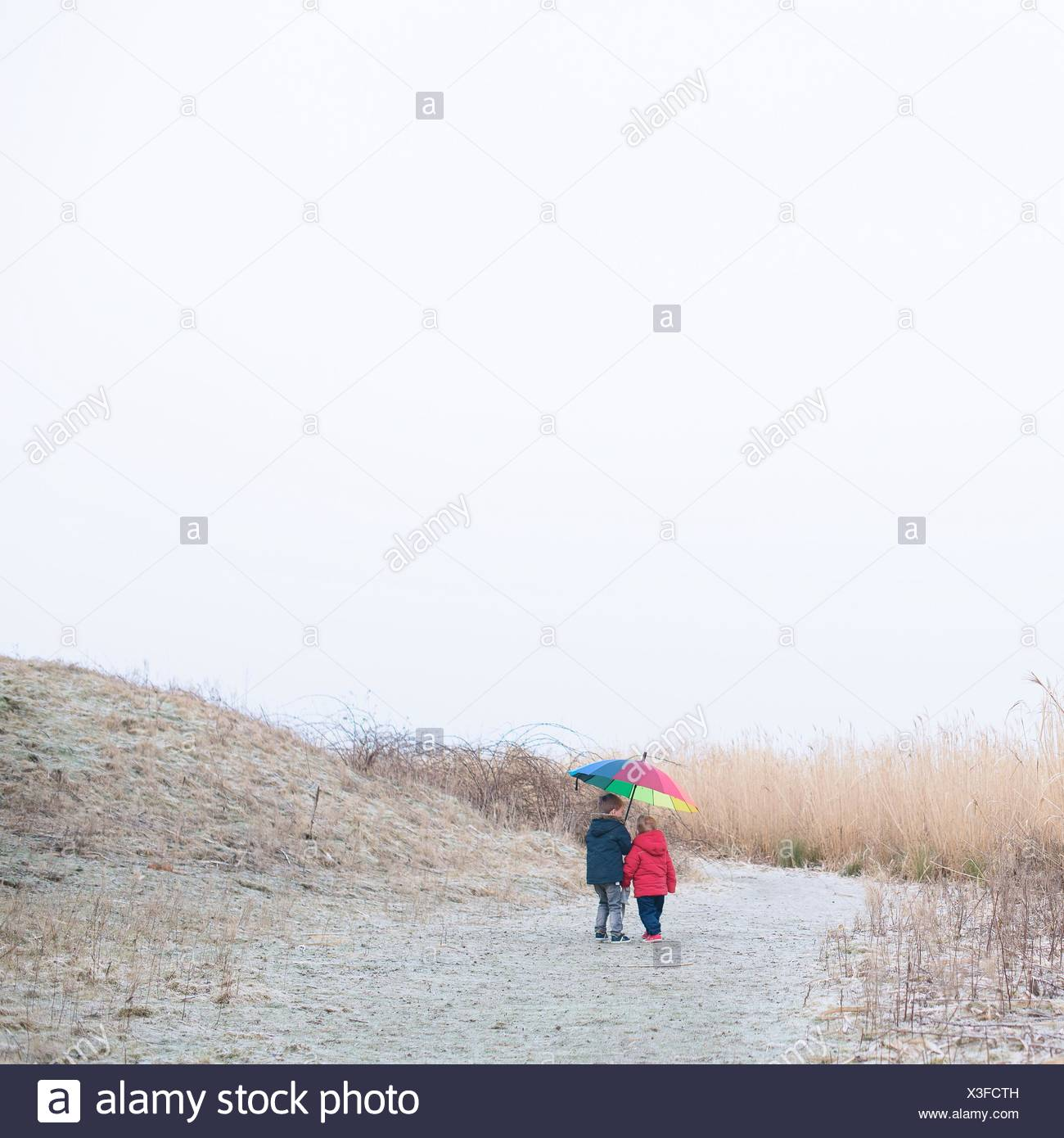 Two boys walking on beach with a multi-colored umbrella - Stock Image