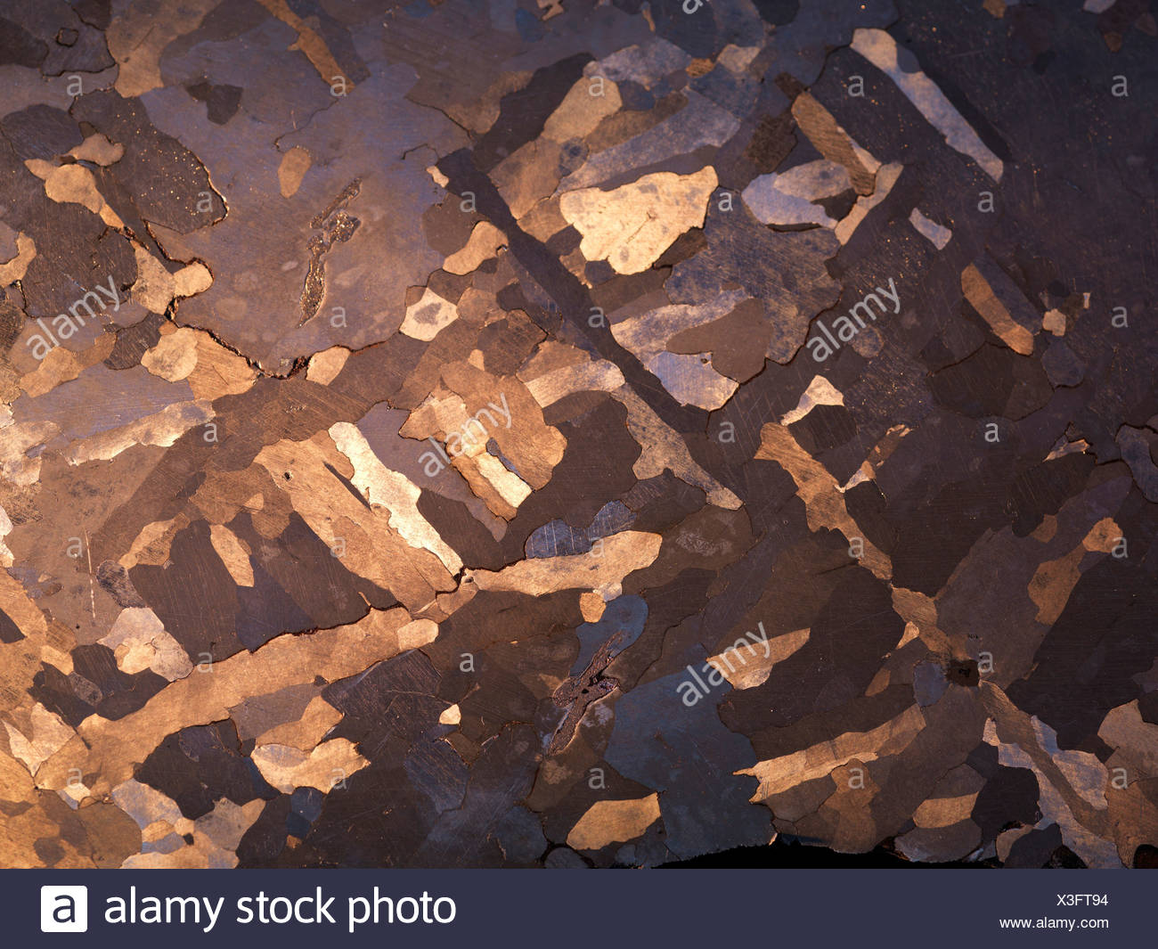 Campo del Cielo iron meteorite slice etched polished to show Widmanstatten structure large austenite crystals Meteorite fell - Stock Image
